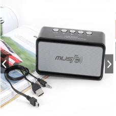 Loa Bluetooth WS655